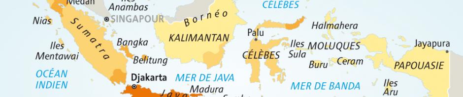 Indonesie - Rhodes Consulting