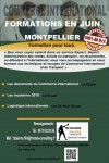 Formation-Commerce-International-Montpellier-Juin-Rhodes-Consulting